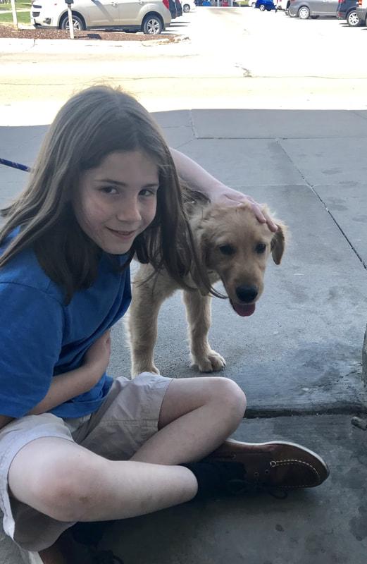 Dallas, My 275th dog pet!