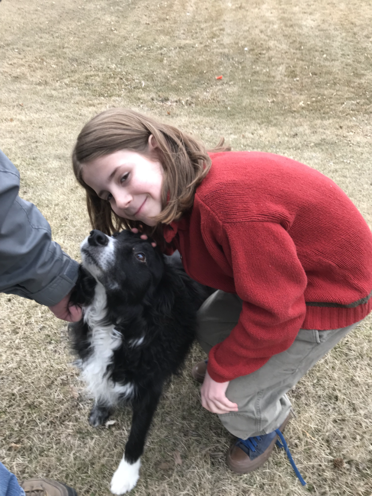 Caden, My 250th pet dog!